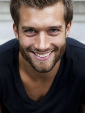 Stefan modelo